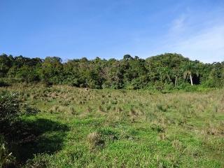 Bo San Salvador Caguas Terreno 8.5 cuerdas