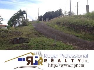 Barrio Rincon Sector Noguera