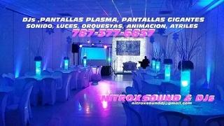 DJs Sonido Luces Pantallas Orquestas