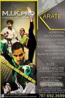 Mik Pro Martial Arts