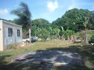 14-0291 En Bo. Bajaderos, Arecibo, PR