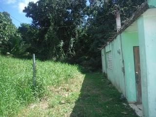 14-0261 En Bo. Quebrada Seca, Ceiba, PR
