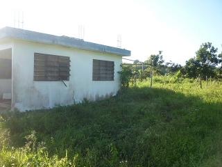 14-0139 En Bo. Guajataca, Quebradillas, PR