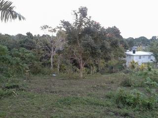 Magnífica residencia ubicada en Bo. Callejones de Lares