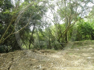 BARRIO BARRAZAS, CARR. 853, KM. 7.8