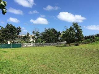 Precioso Solar 1,024 m² en Arecibo - Urb. Colinas de Palmarito (Negociable)