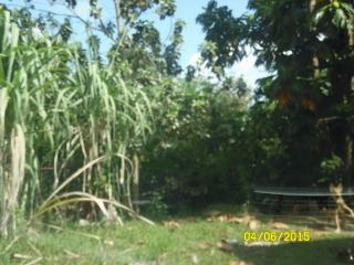 C.R. Mariana, Lot 168