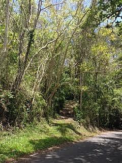 Carr. 109 km 13.0 Bo. Miraflores, Añasco