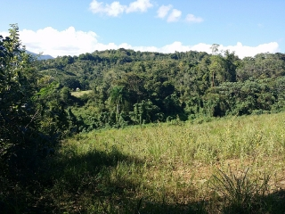 Bo. Daguao, Ceiba