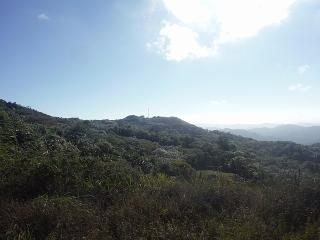 15-0029 En Bo. Villalba Norte, Villalba, PR