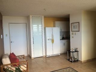 Apartamento Céntrico recién Remodelado