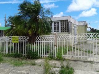 Urb. Villas de Loíza UU-18 Calle 41