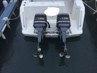 Motor  (1) Yamaha saltwater series 250HP 1998-99