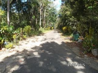 Bo. Florida Afuera Carr 665 Int HCB 3105