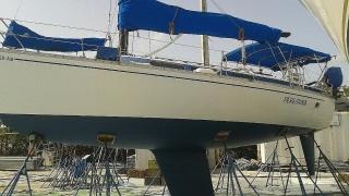 Single Mast 1983 Freedom 32