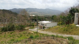 Barrio Mamey, Juncos