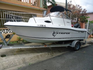 Striper 2006 Special Edition 50 Years Anniversary