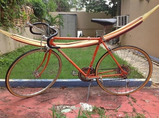 Bicicleta Kalkhoff