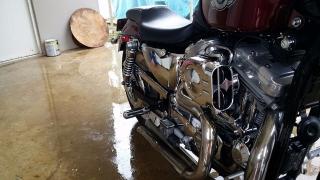 Se vende Harley-Davidson XL883C 2003