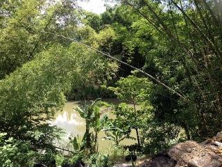 1,000 METROS LLANOS COM VISTA AL RIO DE LOIZA
