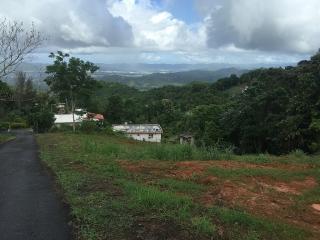 Terreno Con Tremenda Vista Panoramica Hacia Caguas