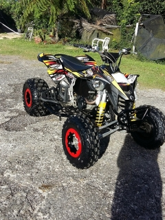 Can-am DS450