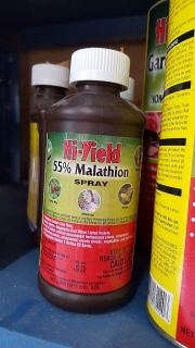 Malathion spray/ Insecticida