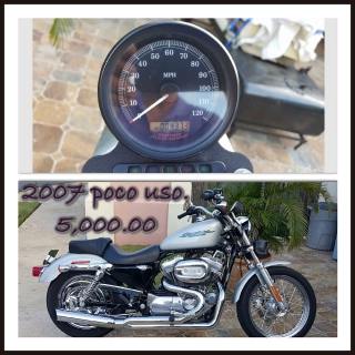 Harley 2007 Sporter 883