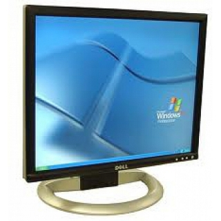Monitor LCD Dell 19 pulgadas