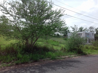 Bo. Pedernales, Carr 307 Km 7.3 Int # 2-D