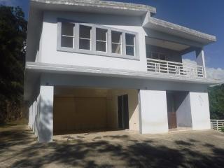 Haga Su Oferta!!! 15-0331 Propiedad de ubicada en la Bo. Bairoa, Sector Las Carolinas en Caguas, PR.