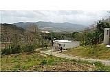 Terreno 2 x 1, salida 12, Juncos $55,000   Bienes Raíces > Residencial > Terrenos > Solares   Puerto Rico > Juncos