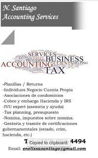 (787) 296-4494 N. Santiago Accounting