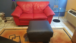 Love Seat & Ottoman 100% piel