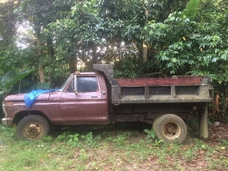 FORD F350 1975