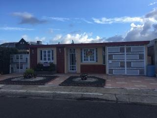 Urbanización Bairoa, Caguas