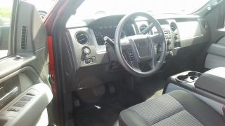 Ford F-150 STX Rojo 2014