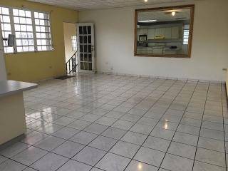 Urb. Bairoa Ave. Las Americas, Caguas