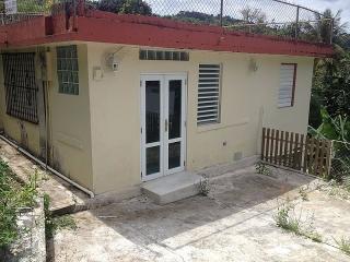 Barrio Canaboncito - Caguas - #9449