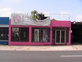 LOCAL COMERCIA AVE. JESUS T. PINEIRO #1186