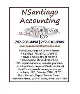 N. SANTIAGO ACCOUNTING - SERVICIOS CONTABILIDAD