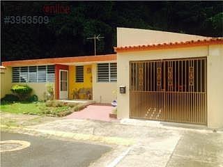 EL PLANTIO -787-784-4659