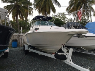 Wellcraft excel 1996 200hp