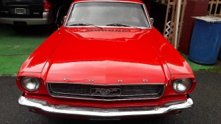Ford, Mustang 1966