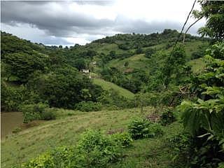 Camino Los Riveros, 11.5 cuerdas con casa