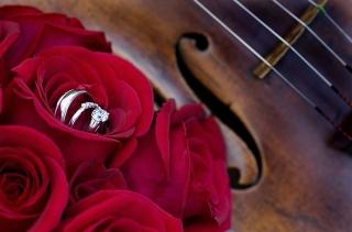 Música de Violines para su boda