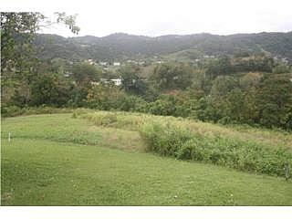 Sector Manantial, Trujillo Alto, 80K