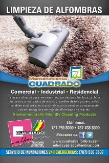 Servicio de Limpieza de Alfombras (Comercial,Industrial,Residencial)