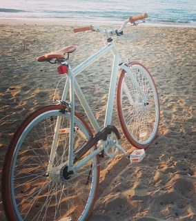 Bicicleta Mongoose Fixi