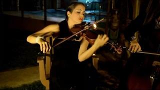 Servicios Musicales de Violin para su actividad